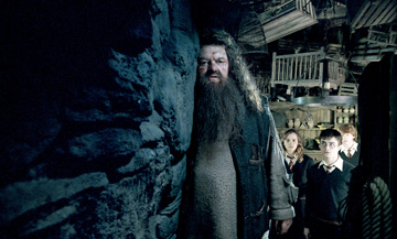 Harry Potter and the Order of Phoenix - 020 - Hagrid