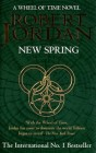 New Spring - Plagát - obalka