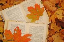 Poviedky na počkanie 49 - Plagát - Jeseň a knihy