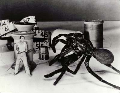Incredible Shrinking Man, The - Záber - Incredible Shrinking Man 1